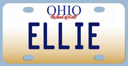 Personalized Ohio Bicycle License Plate